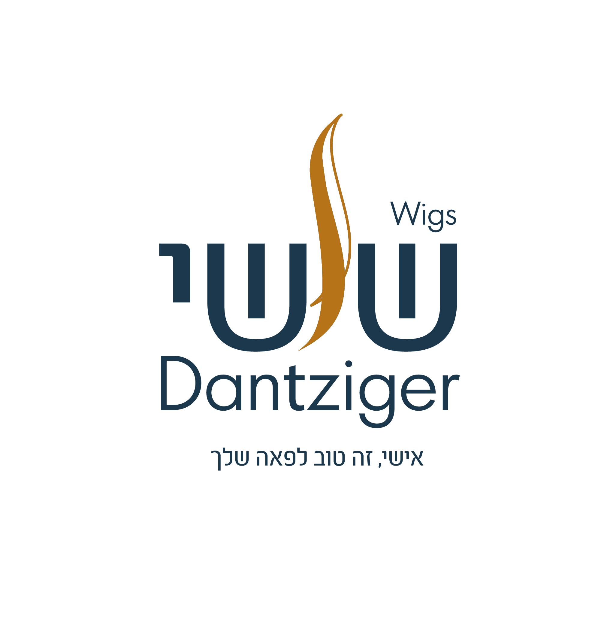 לוגו_שושי דניצגר
